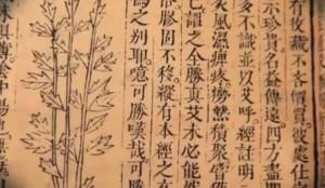 רפואה סינית-טיפול בצמחי מרפא